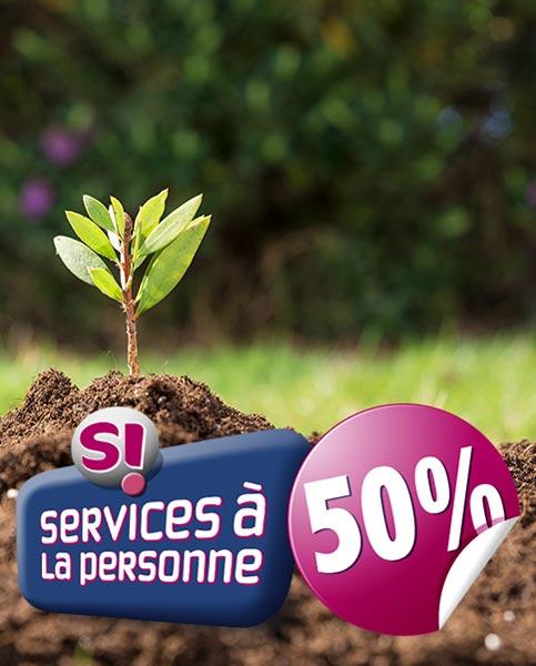 Cr ation et entretien jardin dallage cl ture fd for Entretien de jardin service a la personne